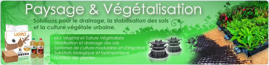 Paysage et vegetalisation