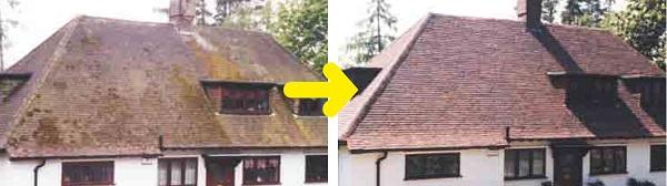 toiture-traitement-surface-mouss-guard-guard-industrie